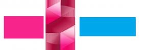 Логотип компании BagSButik