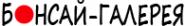 Логотип компании Бонсай-Галерея