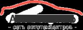 Логотип компании Стилберг-авто