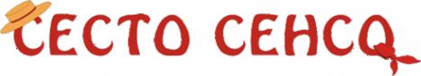 Логотип компании Sesto Senso