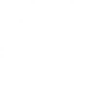 Логотип компании White Eagles Pub