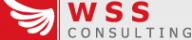 Логотип компании WSS Consulting