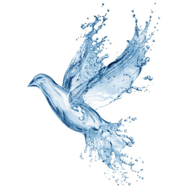 Логотип компании Родники Придонья