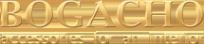 Логотип компании BOGACHO