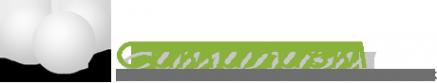 Логотип компании Симилиум