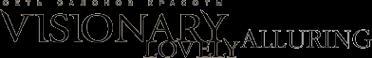 Логотип компании Visionary