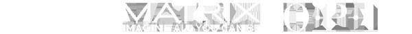 Логотип компании Бергамо