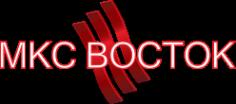 Логотип компании МКС Восток