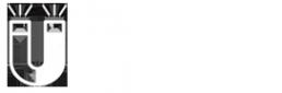 Логотип компании Магнит-Н