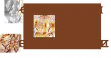 Логотип компании Центральный Дом Недвижимости