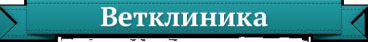 Логотип компании Айвета