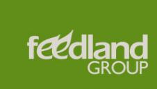 Логотип компании Фидлэнд Групп