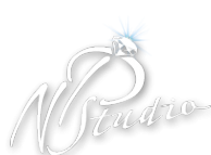 Логотип компании NP-Studio