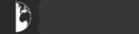Логотип компании Глобал Консалтинг