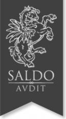 Логотип компании Сальдо-аудит