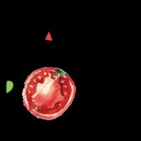 Логотип компании La Roma