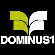 Логотип компании «Доминус»